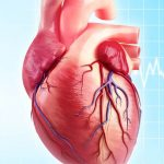 متخصص قلب و عروق بیمارستان تندیس